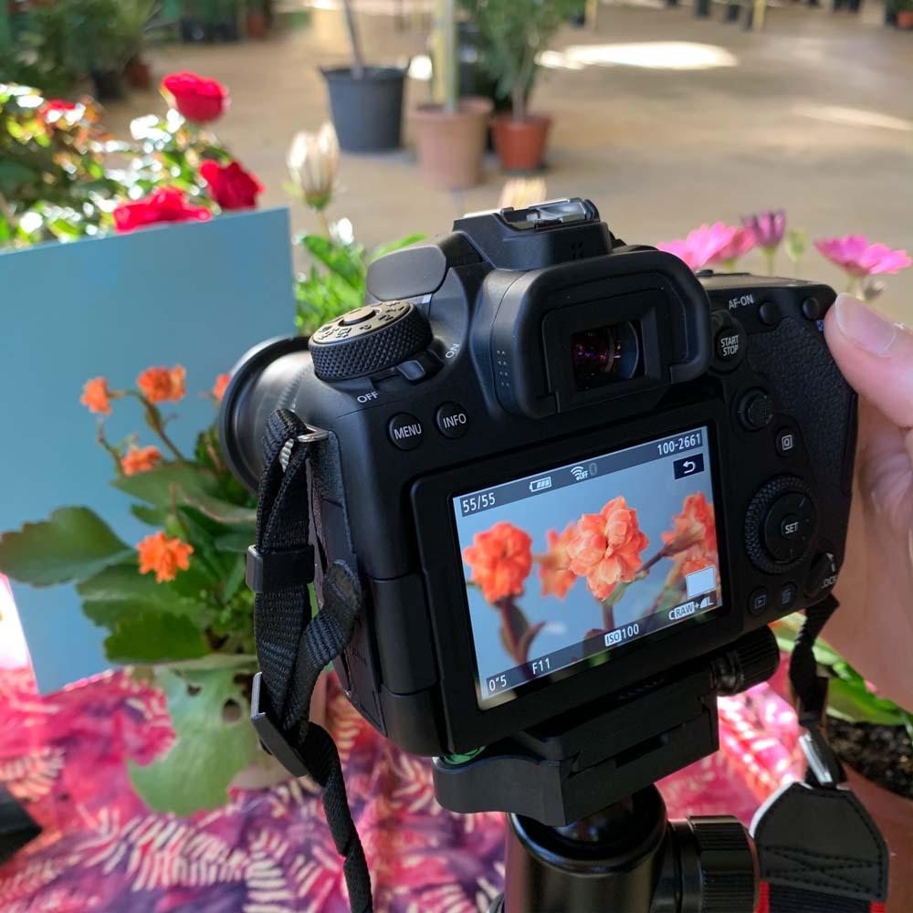 Aprender Fotografía en Jerez